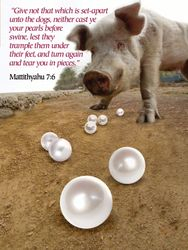 """""""...Neither cast ye your pearls before swine..."""""""