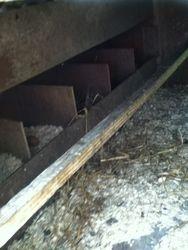inside the new ark
