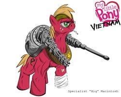 Combat Specialist Big Macintosh