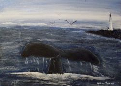 Whales Tale