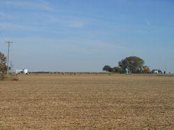 countryside near Oneida
