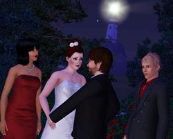 Simself wedding