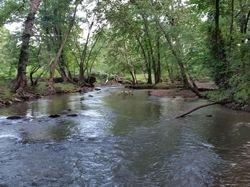 LoneStar Creek Behind My house