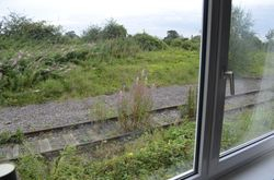 View showing how close the line is from the old waiting room, which is now a living room
