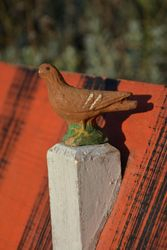 ... and an ancient and battered pigeon watches from the chimney.
