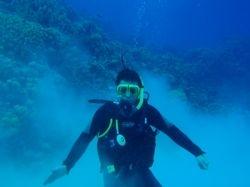 Diving in Bahamas