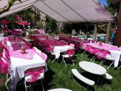 WHITE LINENS WITH HOT PINK ORGANZA OVERLAY