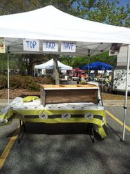Homemade Top Bar Hive