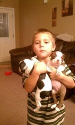 Skyler, Breezer and Skittle