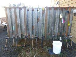 Salmon Swords..