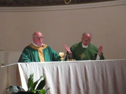 Fr. Aniello assisting the mass