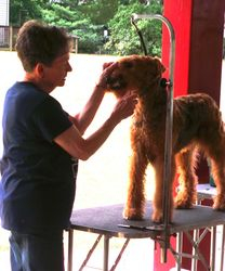 Corally Demonstrating Grooming