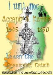 Irelands voice