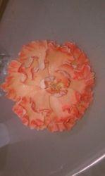 peony orange