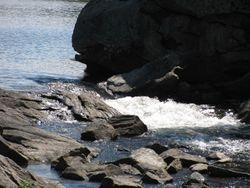 Rapids from McRae Lake