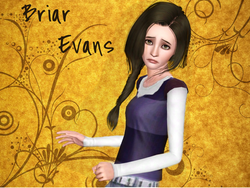 Briar Evans