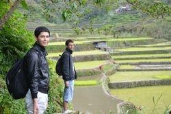 na liticama pirincanih polja