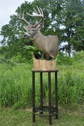 Buck on Floor Pedestal