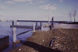 N Harbor with debris