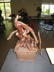 Phoenix Graf deadwood