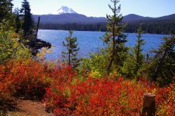 Olallie Lake Trail