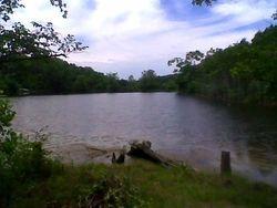 View toward Dam