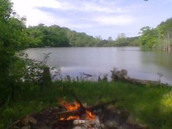 Early Morning Campfire