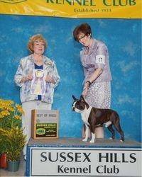 Sussex Hills Kennel Club--8/30/15