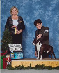 Valley Forge Kennel Club--12/5/15