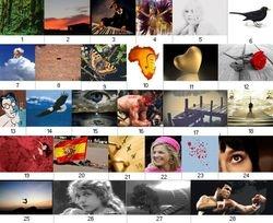 Oudjaarpuzzel 2011 plaatjes