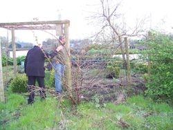 De wildernis in de tweede halve tuin