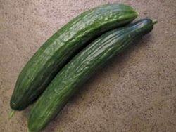 Allereerste komkommers ever 9-7