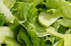 Salade van verse zomergroenten