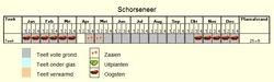 Teeltschema Schorseneer