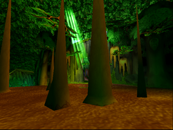 The Forest ( I )