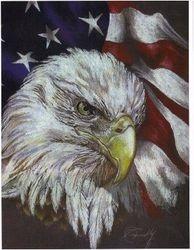 U.S.A. EAGLE PAINTING