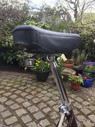 Cleaned up seatpost and saddle