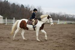 cantering :)
