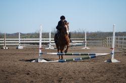 Show Jumpingg!!