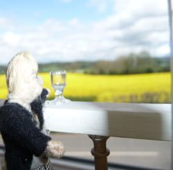 Gazing out over the countryside beyond...