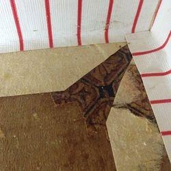 Tiny Scrap of Original Flooring