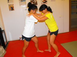 Semi Private Muay Thai grappling Seminar