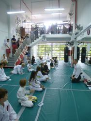 ZDK Karate Kids gradings