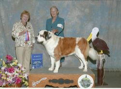 CH Pinevalley's Rock 'N Roll Sadie,CGC