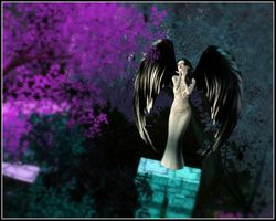 3.But sometimes it is the resting place of a dark angel