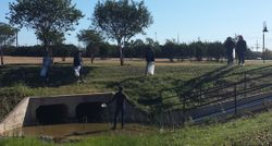 Students clean up trash in the park waterways