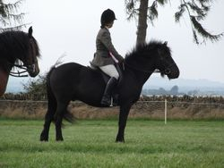L. Jet with owner Diana McGrail