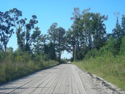 Indian Neck Rd 2
