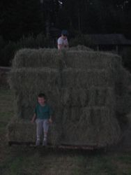 And the last load goes to the barn.