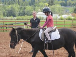 Mackenzie on Star, working on that perfect equitation.